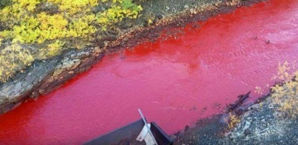 Река в Красноярске окрасилась в красный цвет! Местные жители в ужасе!!!