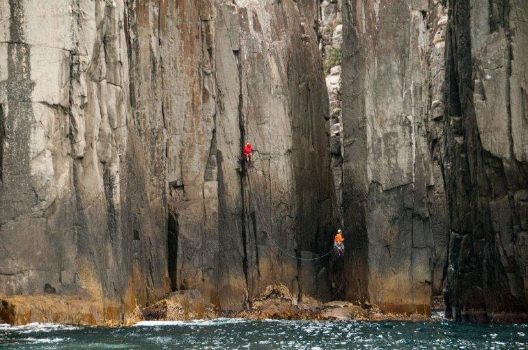 Эти колонны побережья Тасмании впечатляют весь мир!