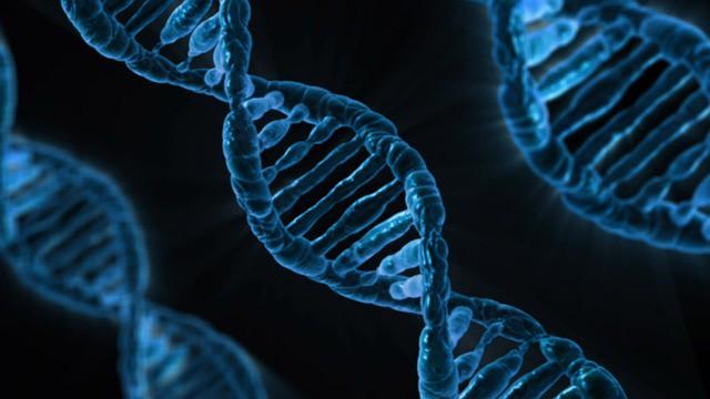 Страшны ли генетические заболевания и как их выявить?