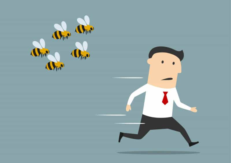 Укусила пчела? Как бороться с этой неприятностью?