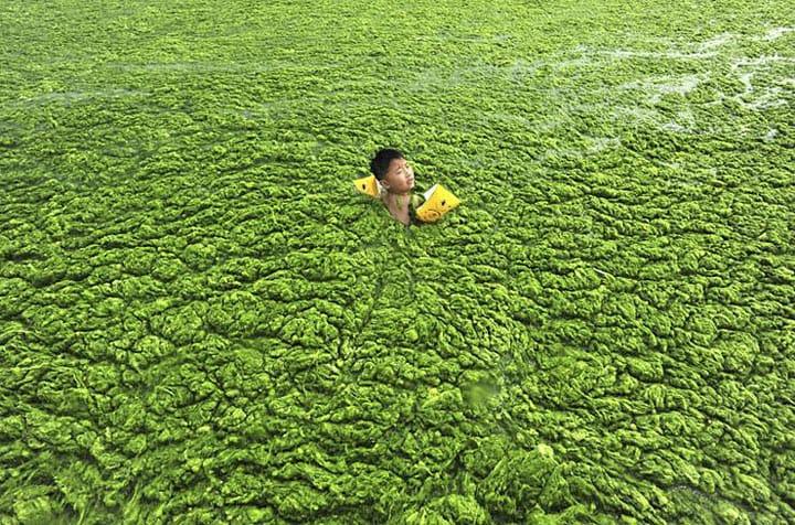 После этих фото жить в Китае никогда не захочется!