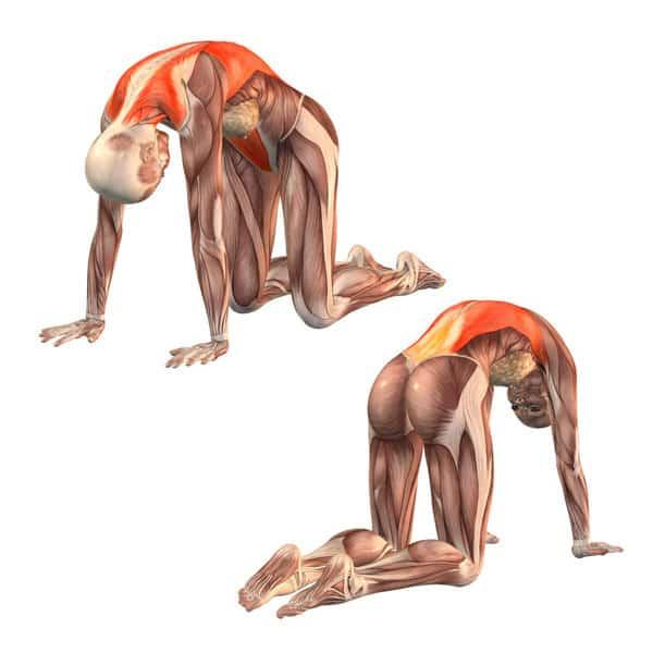 6 упражнений, которые снимут напряжение! Выполняйте каждый день!