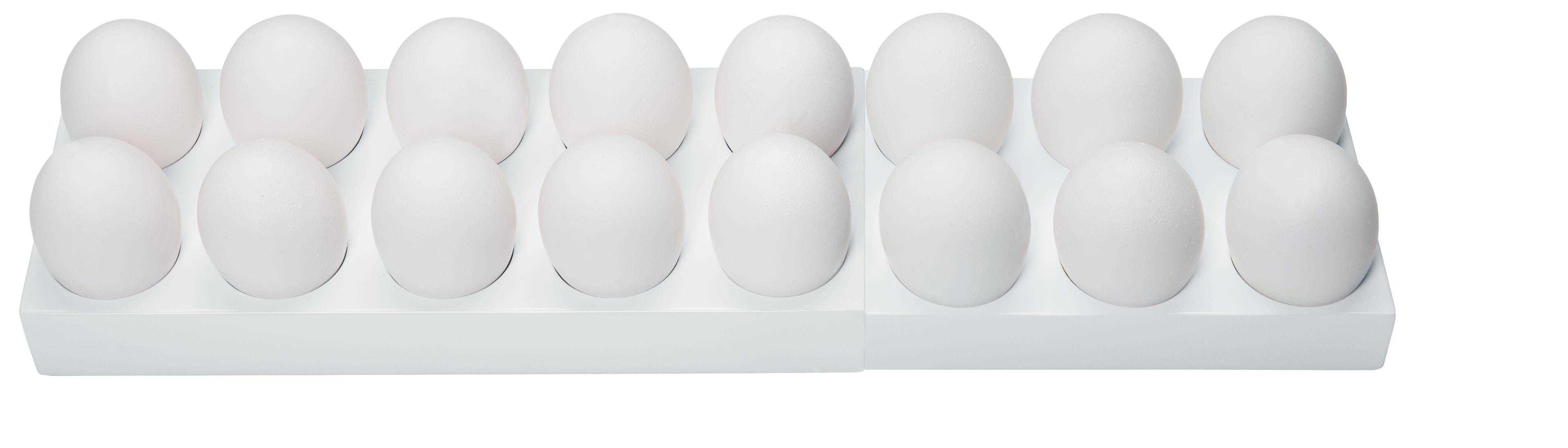 Вся правда о яйцах: 10 интересных фактов!