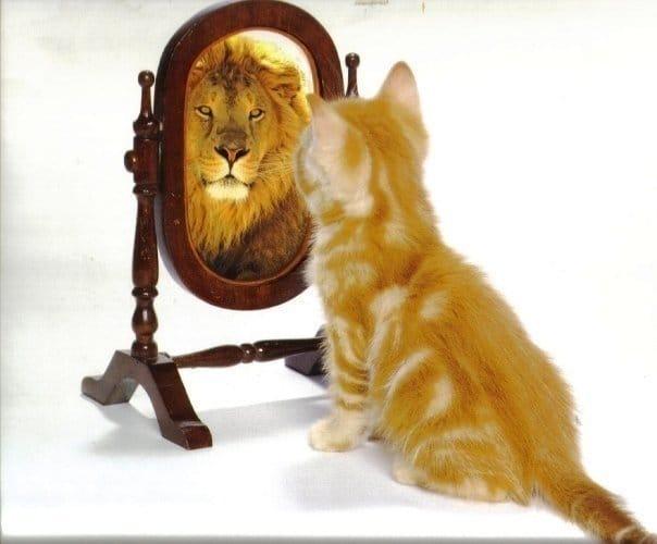 Как повысить самооценку? 10 верных шагов!