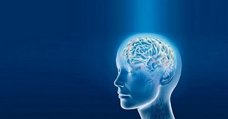 Делайте эти 5 вещей и клетки Вашего мозга начнут восстанавливаться.