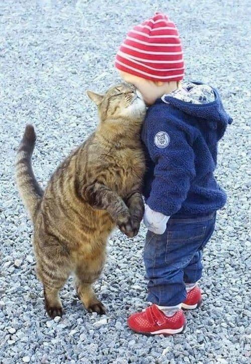 Лучшие друзья. Тот случай, когда существует чуткое взаимопонимание!