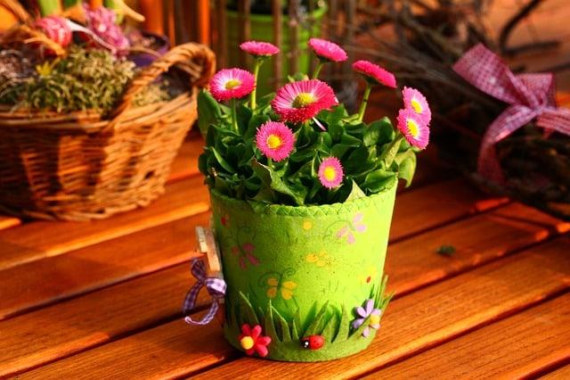 Как баба Люба приучила хулиганов читать книги и поливать цветы! Вот это номер!