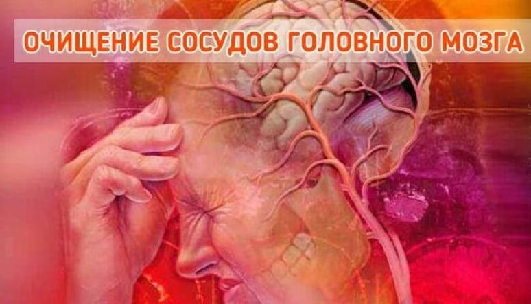 Очищаем кровеносную систему. Сосуды скажут Вам спасибо!