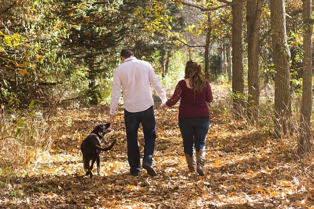 Супруги гуляли с собакой и нашли то, что навсегда изменило их жизнь!