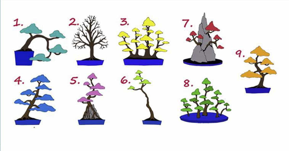 Узнай кто ты? Выбери понравившееся дерево!