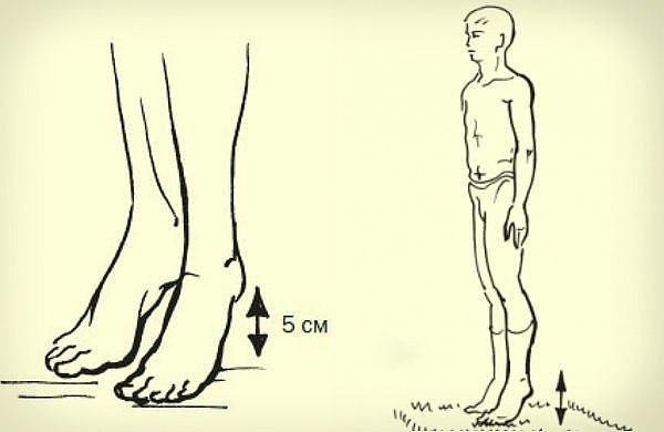 Всего одно простое упражнение для профилактики тромбофлебита и улучшения кровообращения!