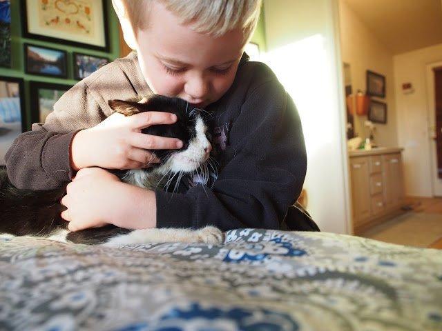 20-летнему коту повезло лишь под конец жизни. Трогательно до слёз.