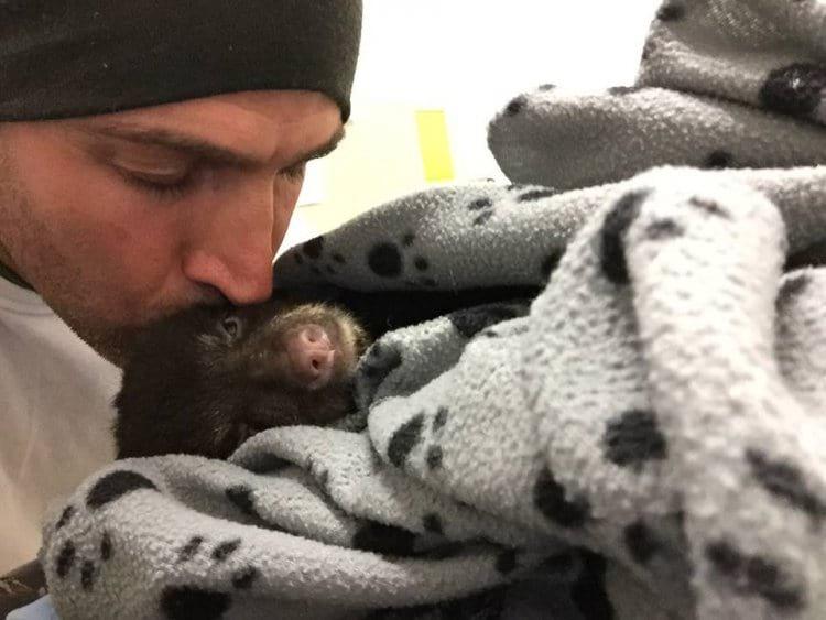 Он спас медвежонка, рискуя жизнью и свободой. Даже тюрьма не испугала парня!