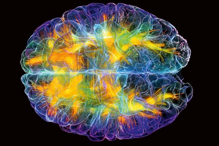 5 особенностей нашего мозга, которые можно применить с пользой для себя!