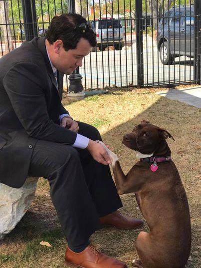 Он жестоко и долго издевался над собакой и думал, что безнаказанно... Но справедливость восторжествовала!