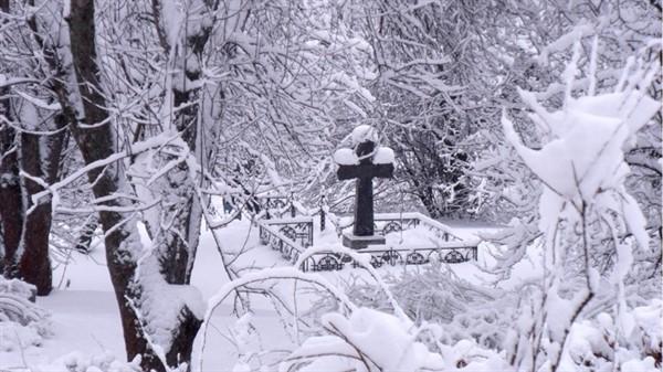 Девушка пошла через кладбище. То, что произошло дальше, она не предвидела...