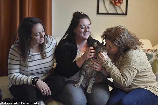 Более двух лет семья искала своего кота... А найти помог Facebook.