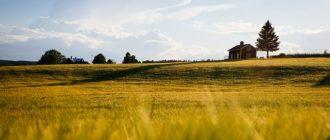 «Жить на земле» – новый доходный тренд