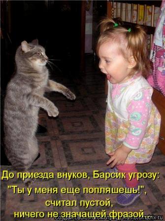 http://lifeinkaif.ru/wp-content/uploads/2016/09/Vnuki-priehali.jpg