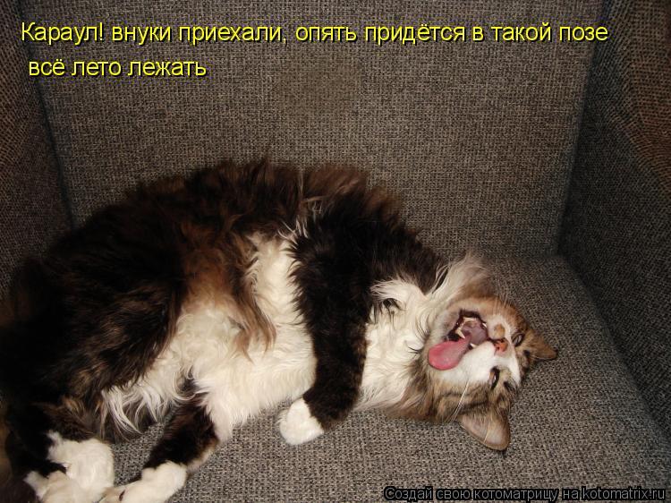 http://lifeinkaif.ru/wp-content/uploads/2016/09/karaul.jpg