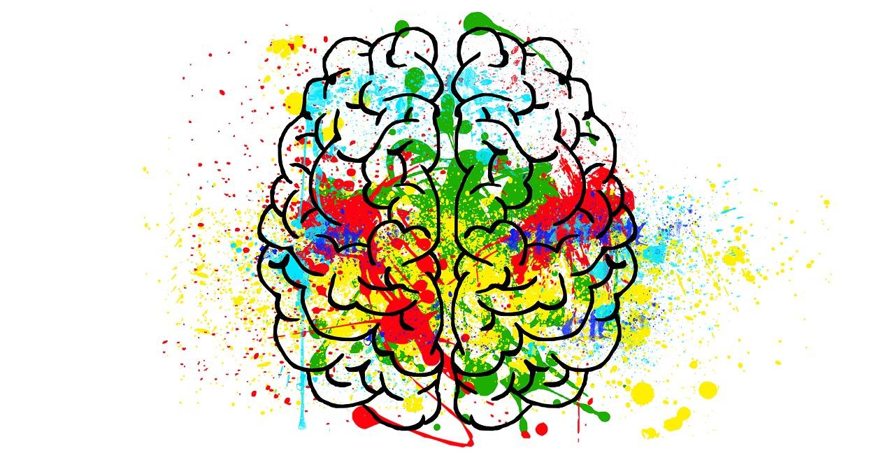 5 потрясающих фактов о мозге: возьмите их на вооружение, и ваша жизнь станет изменится!