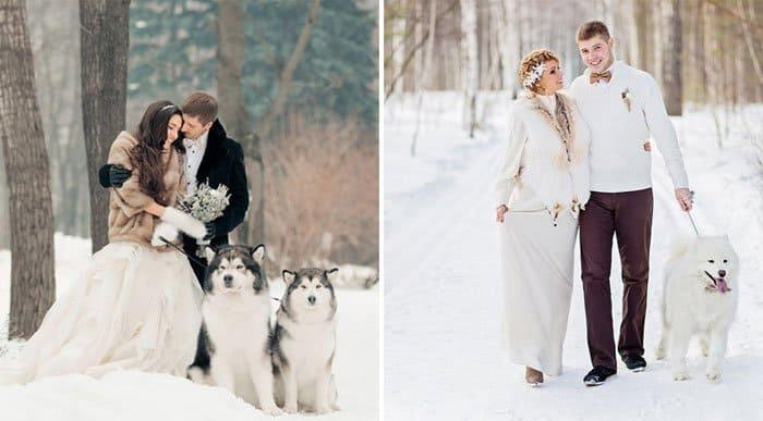 Свадьба зимой, как выбрать зимние свадебные платья, чтобы не замерзнуть !