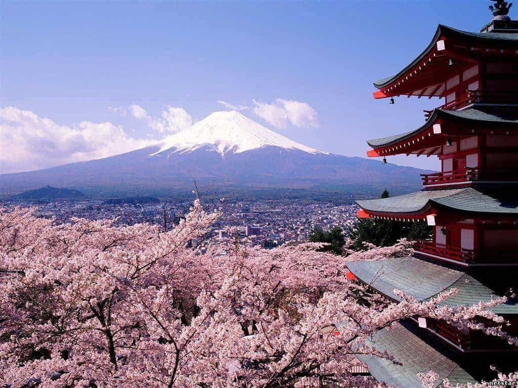 religiya yaponii